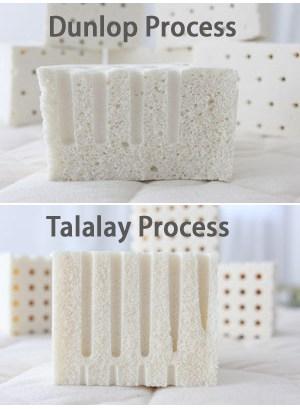 dunlop-vs-talalay